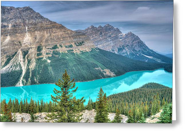 Fed Greeting Cards - Peyto Lake 2 Greeting Card by Douglas Barnett