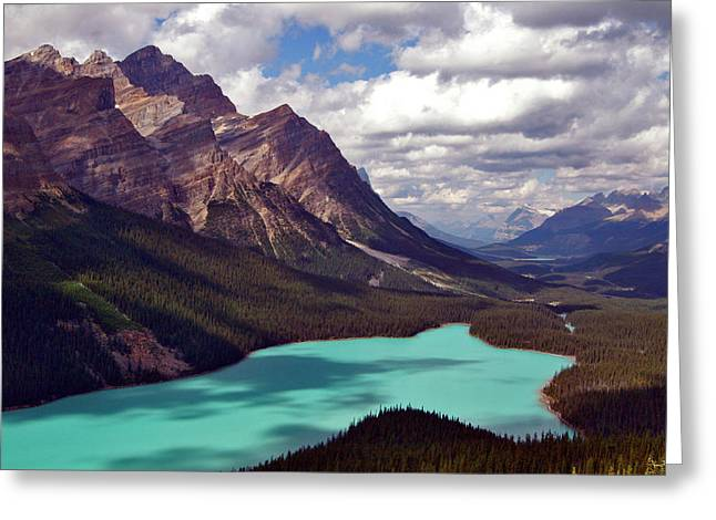 Jeremy Greeting Cards - Peyto Lake August Greeting Card by Jeremy Rhoades