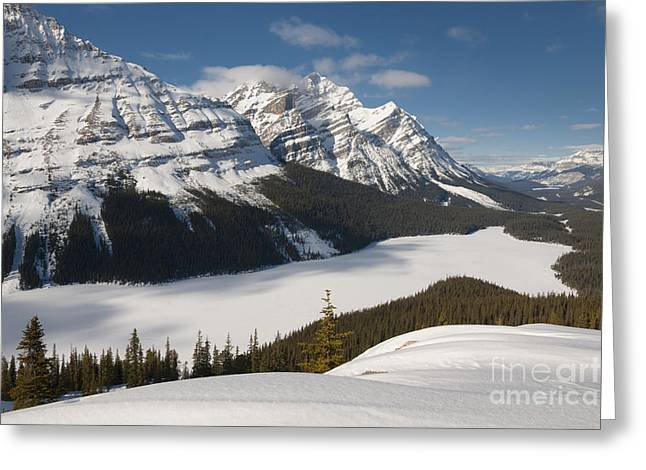 Snow Scene Landscape Greeting Cards - Peyto Lake In Mid-winter Greeting Card by John Shaw