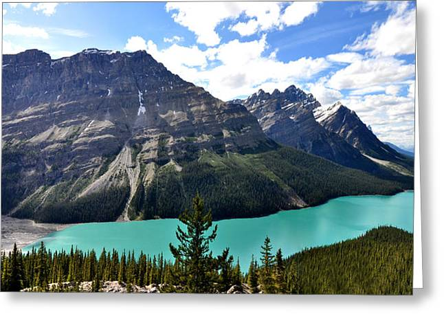 Mountain Reflection Lake Summit Mirror Greeting Cards - Peyto Lake in Rocky Mountains Canada Greeting Card by Eddy Galeotti