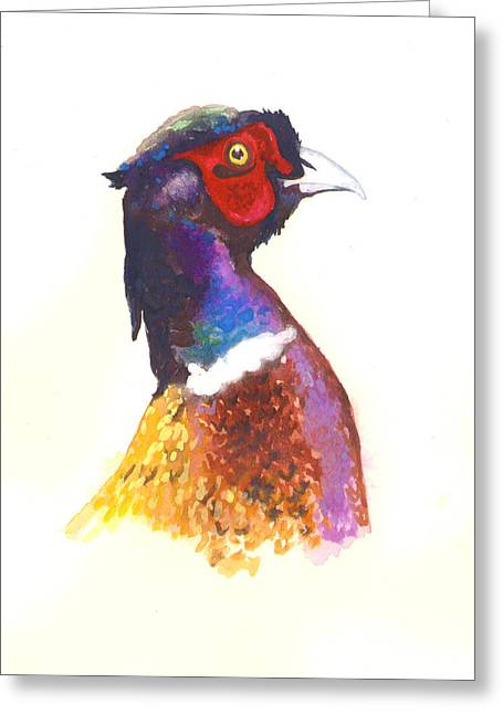 Hunting Animals Greeting Cards - Pheasant Watercolor Greeting Card by Alison Fennell