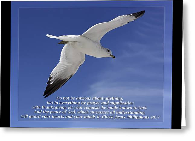 Philippians 4 6-7 Greeting Card by Dawn Currie