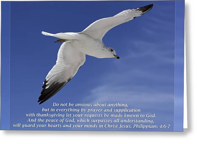 Get Well Greeting Cards - Philippians 4 6-7 Greeting Card by Dawn Currie