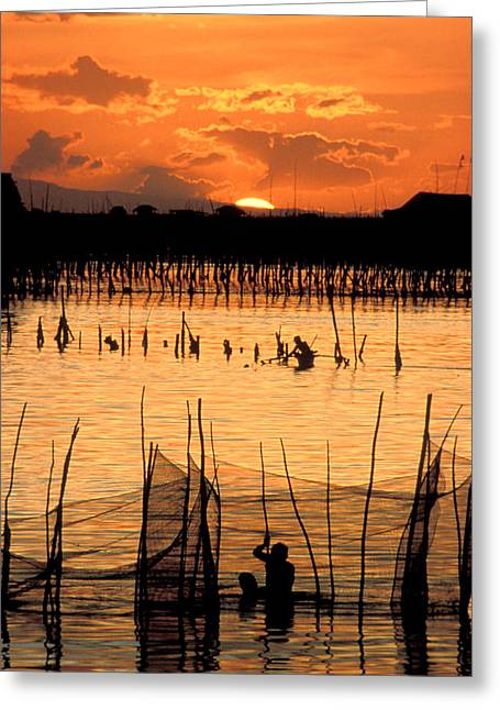 Early Morning Sun Greeting Cards - Philippines Manila Fishing Greeting Card by Anonymous