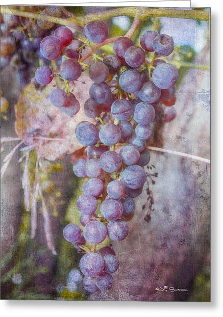 Silver Hills Winery Greeting Cards - Phils Grapes Greeting Card by Jeff Swanson