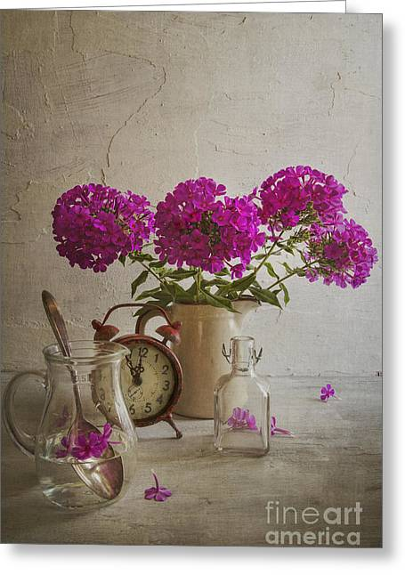 Phlox Greeting Cards - Phlox Greeting Card by Elena Nosyreva