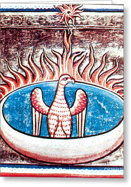 Live Art Greeting Cards - Phoenix, Legendary Creature Greeting Card by Photo Researchers