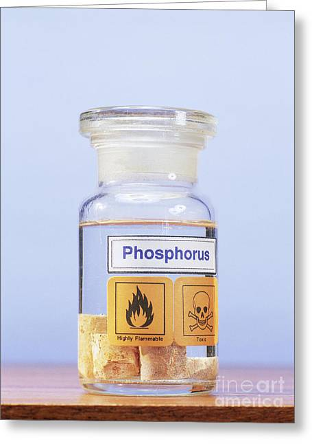 Water Jars Greeting Cards - Phosphorus Stored Under Water Greeting Card by Andrew Lambert Photography