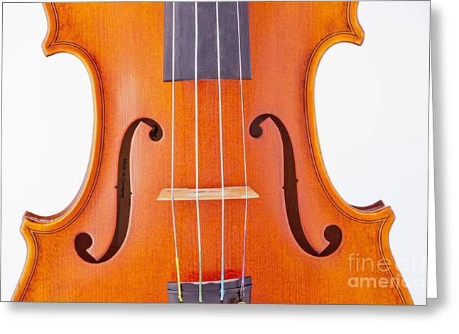 Still Life Photographs Greeting Cards - Photograph of a Viola Violin Middle in Color 3374.02 Greeting Card by M K  Miller