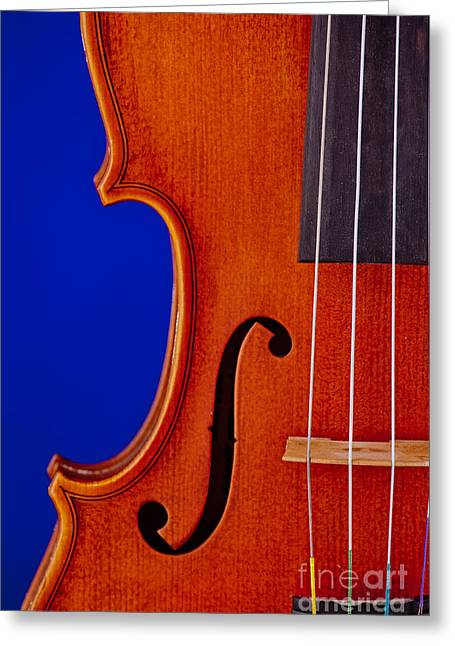 Still Life Photographs Greeting Cards - Photograph of a Viola Violin Side in Color 3372.02 Greeting Card by M K  Miller