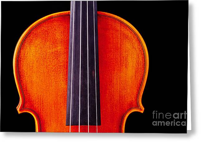 Still Life Photographs Greeting Cards - Photograph or Picture Violin Viola Body in Color 3367.02 Greeting Card by M K  Miller