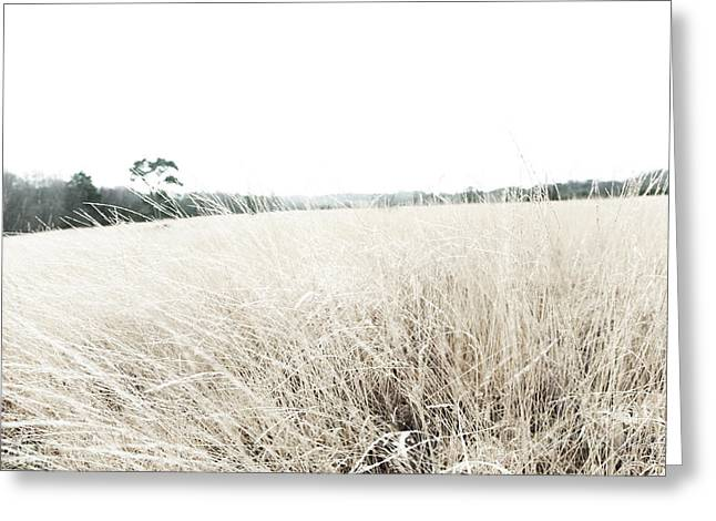 Photographic Sketch of a Winter Landscape Greeting Card by Natalie Kinnear