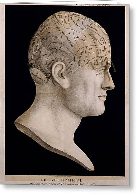 Therapy Greeting Cards - Phrenology Greeting Card by Nomad Art And  Design