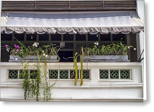 Flower Boxes Greeting Cards - Phuket Windows - Two Greeting Card by Nomad Art And  Design