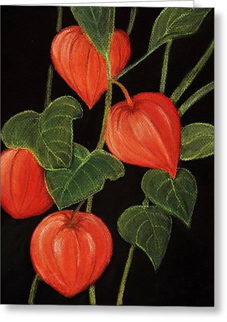 Plant Pastels Greeting Cards - Physalis Greeting Card by Anastasiya Malakhova