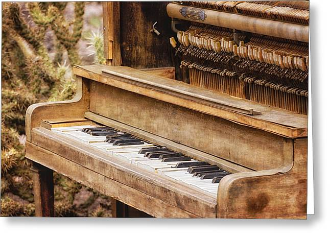 Recently Sold -  - Fineartamerica Greeting Cards - Piano in the Desert Greeting Card by Sue Eberhart