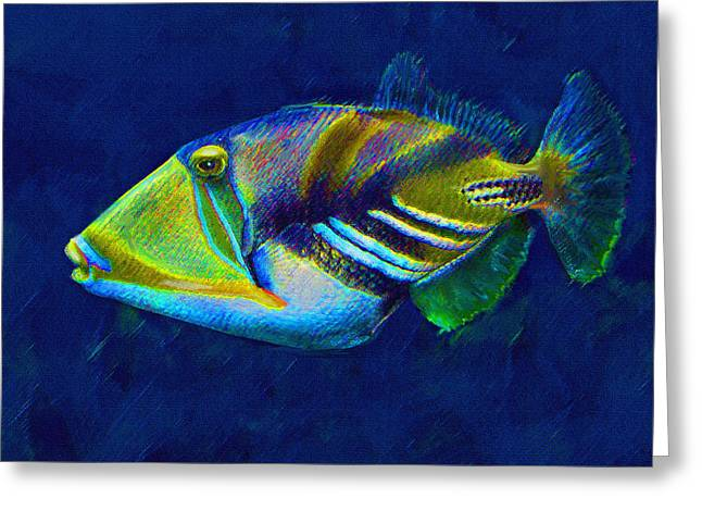 Reef Fish Digital Art Greeting Cards - Picasso Triggerfish Greeting Card by Jane Schnetlage
