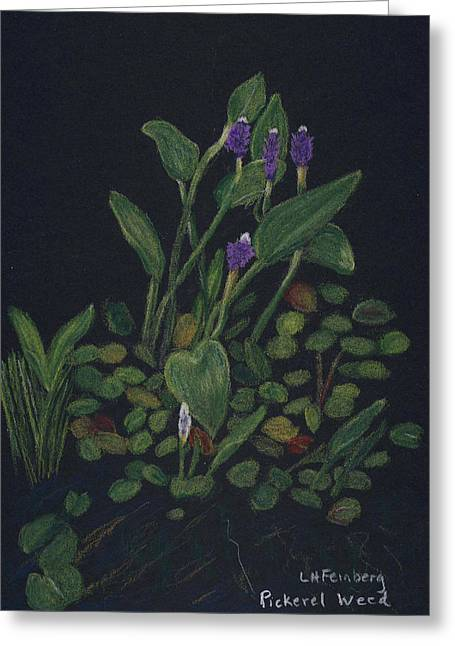 Pickerel Greeting Cards - Pickerel Weed Greeting Card by Linda Feinberg