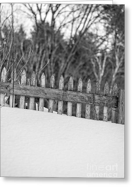 Snow Drifts Greeting Cards - Picket Fence Greeting Card by Edward Fielding
