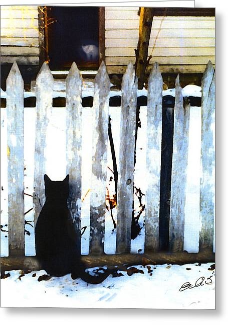 Shelter Kitty Greeting Cards - Picket Fence Love Greeting Card by Elia Peters