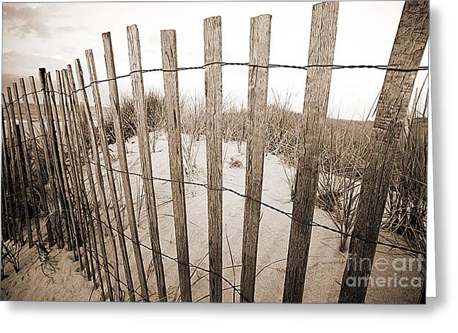Picket Line Greeting Card by A New Focus Photography