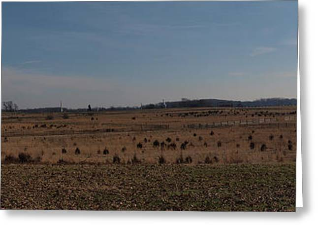 Cemetery Ridge Greeting Cards - Picketts Charge from Seminary Ridge Greeting Card by Joshua House