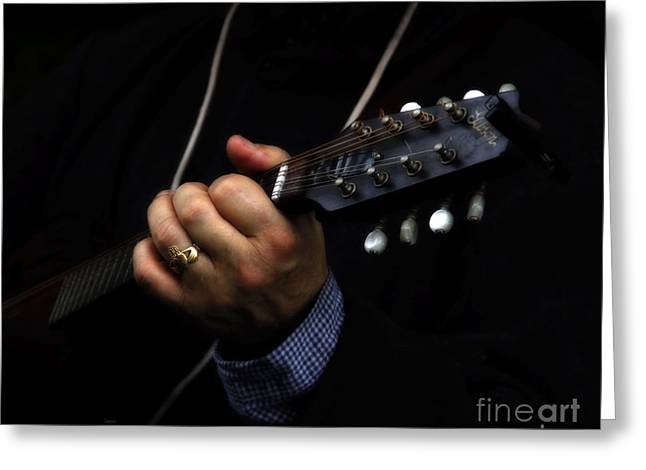 Picking On Gibson Greeting Card by Steven  Digman