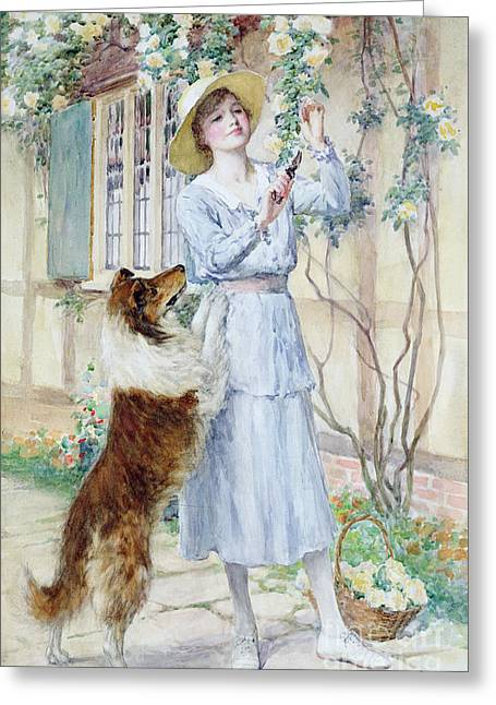 Puppies Greeting Cards - Picking Roses Greeting Card by William Henry Margetson