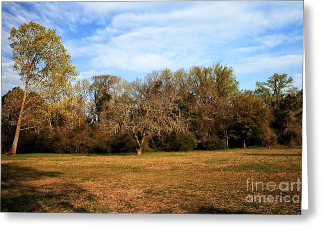 Historic Site Greeting Cards - Pickneys Field Greeting Card by John Rizzuto