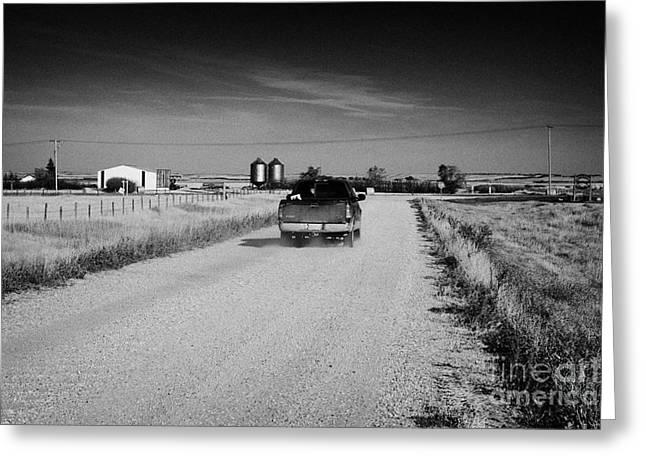 Localities Greeting Cards - pickup truck driving down rough unpaved rural road in farming community Saskatchewan Canada Greeting Card by Joe Fox
