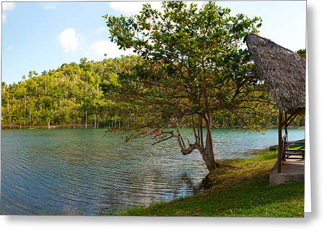 Shed Photographs Greeting Cards - Picnic Area At Pond, Las Terrazas Greeting Card by Panoramic Images