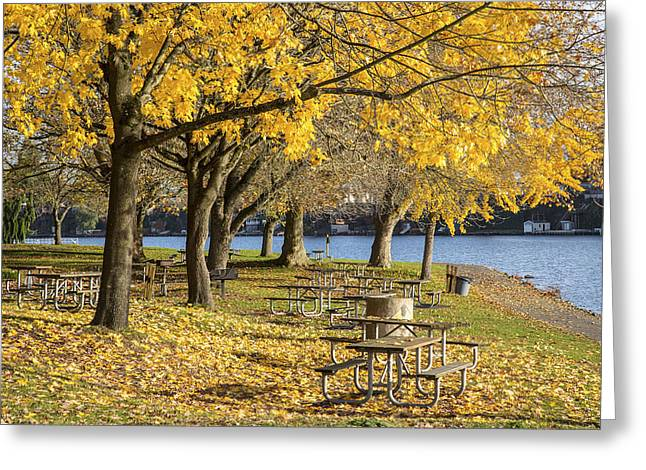 Leasure Greeting Cards - Picnic area Blue Lake park Oregon. Greeting Card by Gino Rigucci