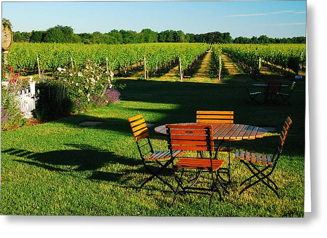 Photography Of Liquor Greeting Cards - Picnic in the Vineyard Greeting Card by James Kirkikis