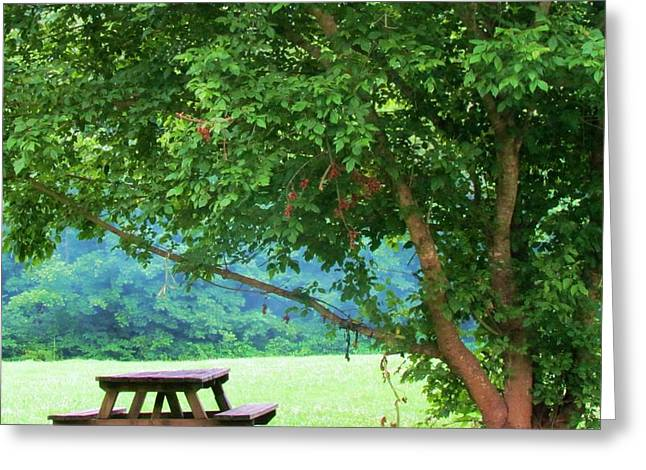 Table Greeting Cards - Picnic Spot Greeting Card by Beverly Canterbury