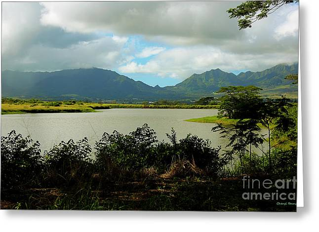 Interior Scene Photographs Greeting Cards - Picnic Spot Greeting Card by Cheryl Young