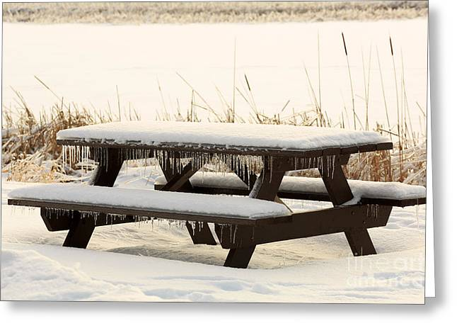 Picnic Table In Winter Greeting Card by Louise Heusinkveld