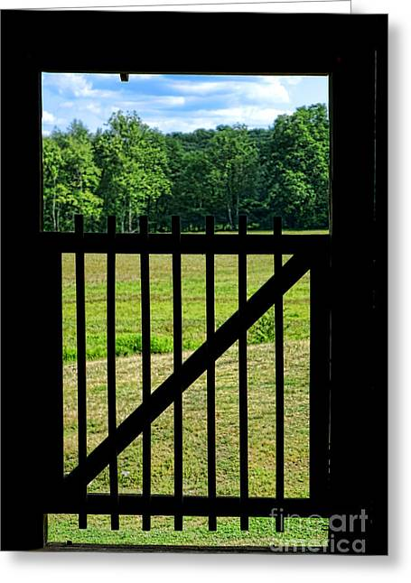 Rural Landscapes Greeting Cards - Picture Gate  Greeting Card by Olivier Le Queinec