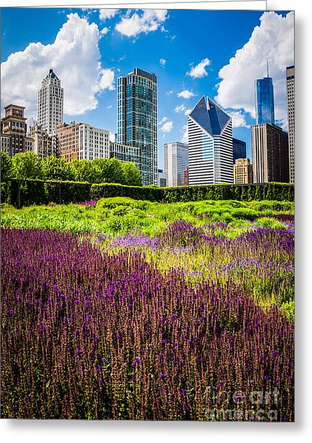 Picture Of Chicago Skyline With Lurie Garden Flowers Greeting Card by Paul Velgos