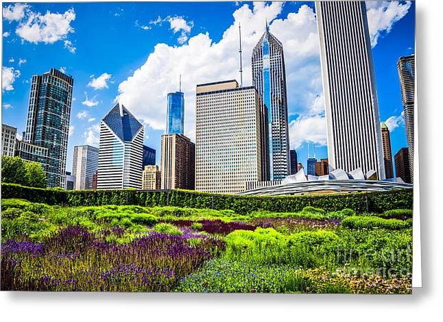 Millennium Park Greeting Cards - Picture of Lurie Garden Flowers with Chicago Skyline Greeting Card by Paul Velgos