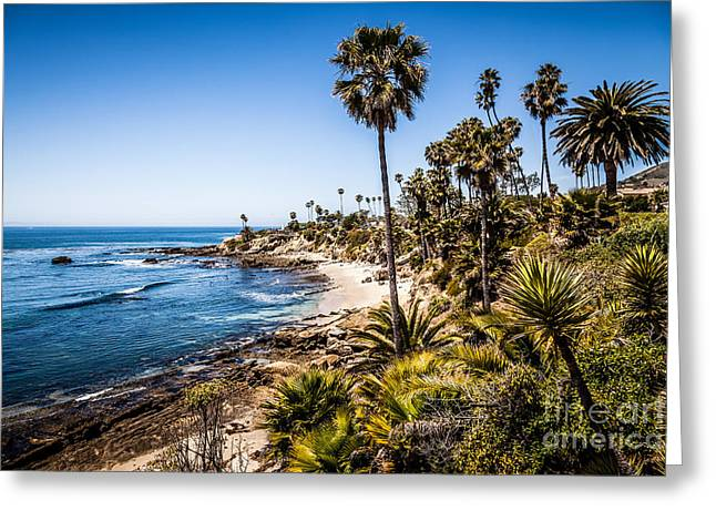 Tree Photo Greeting Cards - Picture of Orange County California Greeting Card by Paul Velgos
