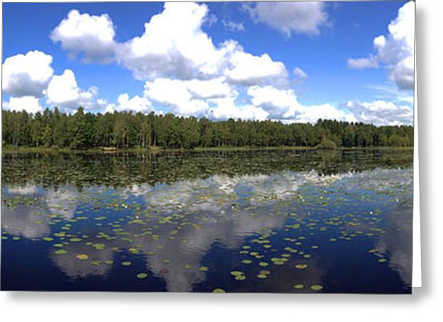 Trees Reflecting In Water Greeting Cards - Picture Perfect Pond Greeting Card by Richard Stephen