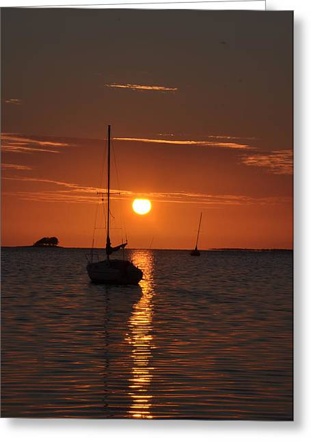 Dunedin Greeting Cards - Picture Perfect Sunset Greeting Card by Bill Cannon