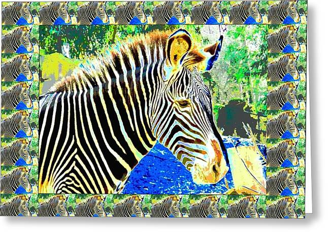 Zebra Picture Prints Greeting Cards - Picture This Greeting Card by Tina  Vaughn
