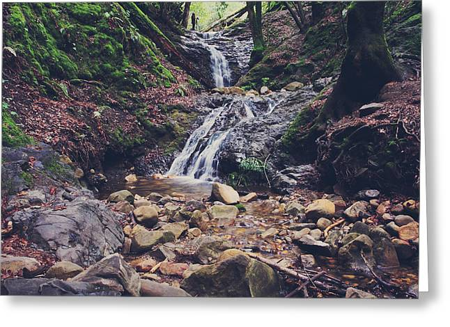 Falling Water Creek Greeting Cards - Picturesque Greeting Card by Laurie Search