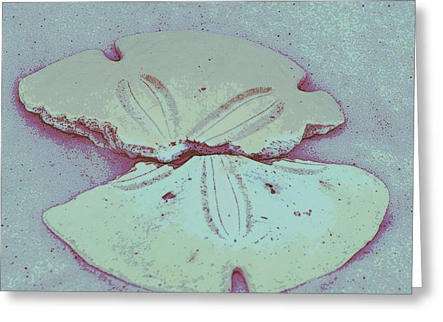 Florida Panhandle Digital Greeting Cards - Pieced together Greeting Card by Laurie Pike