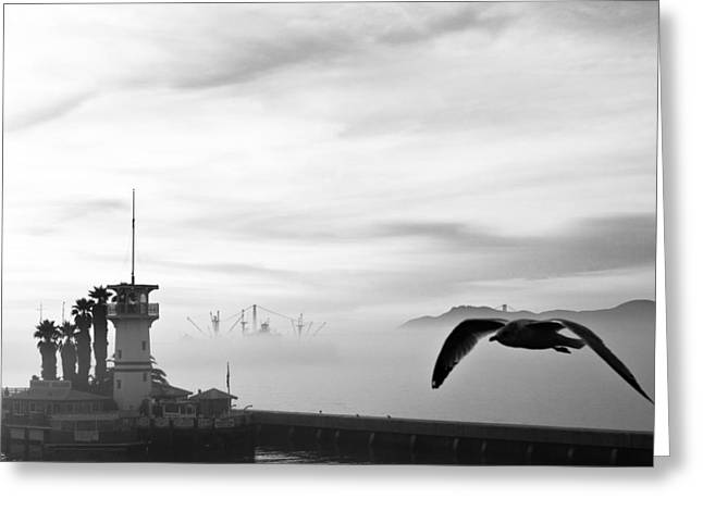Sausalito Greeting Cards - Pier 39 Greeting Card by Allen Tunget
