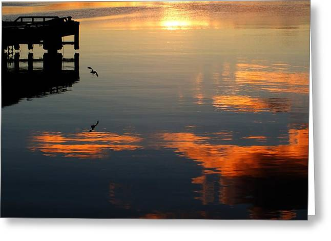 Reflections Of Sky In Water Greeting Cards - Pier And Seagull In The Sunset Greeting Card by Anne Macdonald