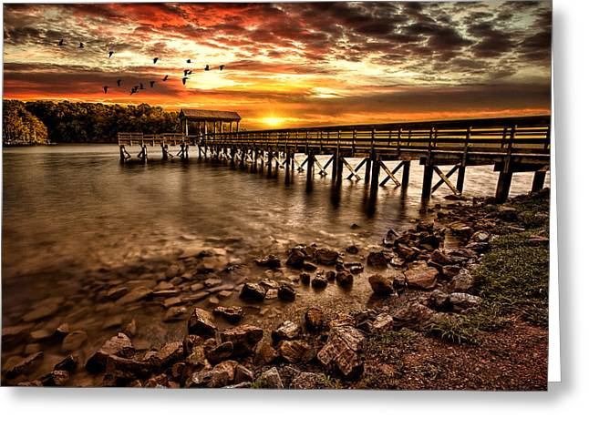 Water Bird Greeting Cards - Pier at Smith Mountain Lake Greeting Card by Joshua Minso