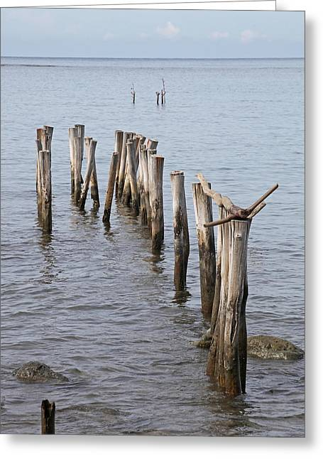 Pier Greeting Card by Jim Nelson