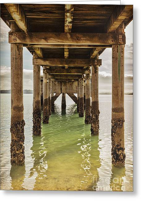 Old Structure Greeting Cards - Pier Under 2 Greeting Card by Colin and Linda McKie